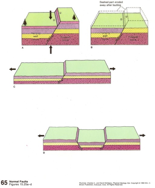 A, B, and C depict Normal Faulting.  In D normal faulting has produced HORSTS and GRABENS.  Horsts are the up-thrown blocks and the Grabens are the down-thrown blocks.  In other words, the Horsts are the ridges and the Grabens are the valleys.
