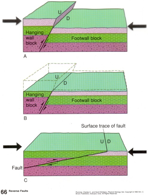 A and B are REVERSE faults and C is a low-angle reverse fault, typically called a THRUST fault.