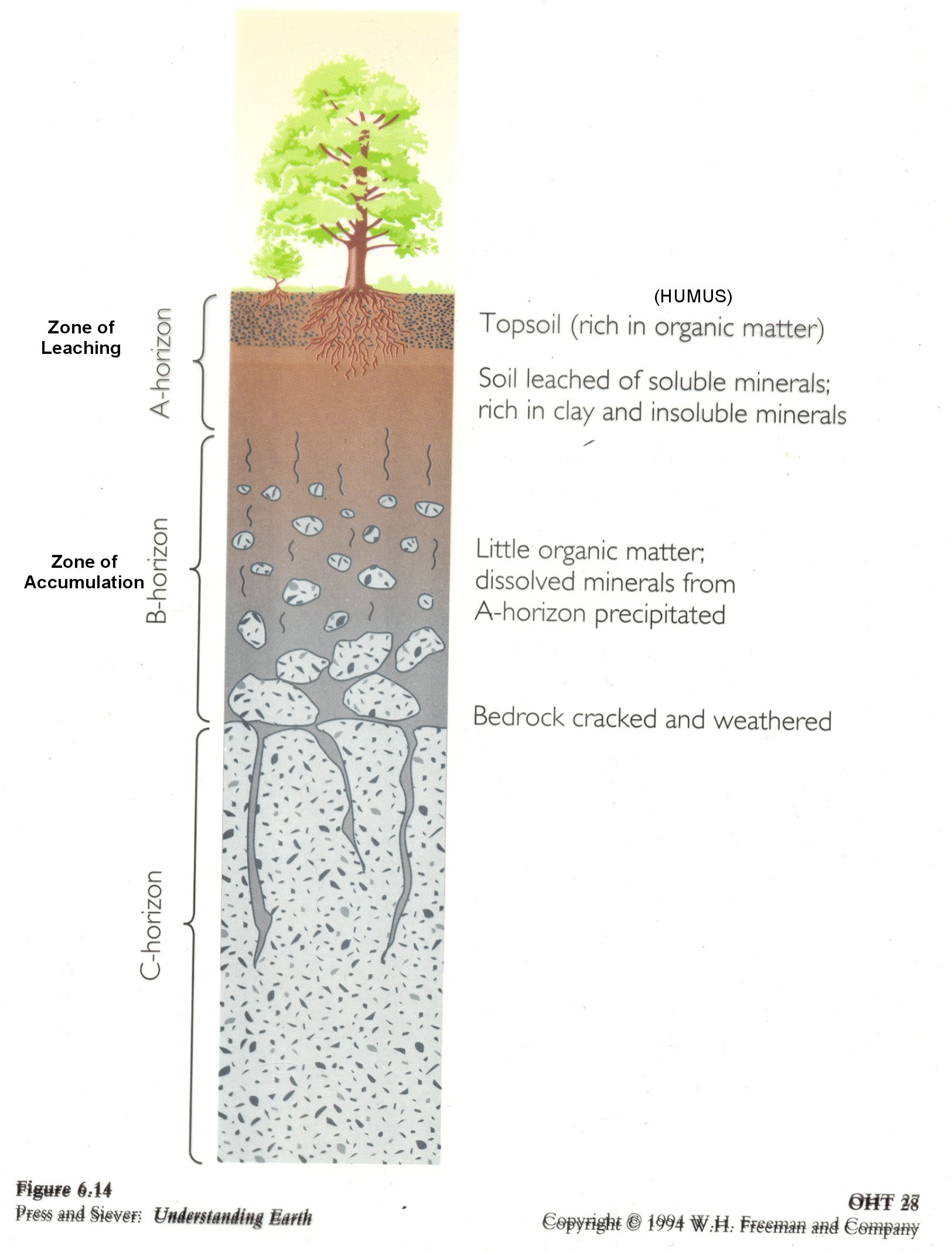 Diagram soil types images how to guide and refrence for Three uses of soil